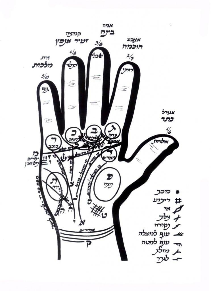 קריאה בכף היד, כף יד
